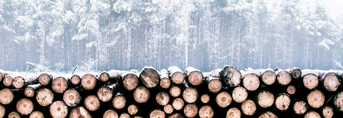 Forestry & Timber transport